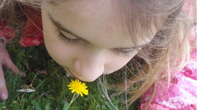 Wir Erleben Den Frühling Mit Allen Sinnen