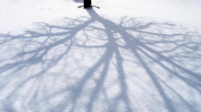 Schnee 04