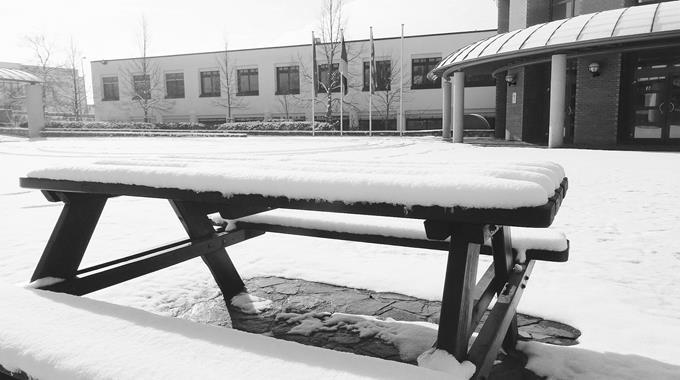 Schnee 21