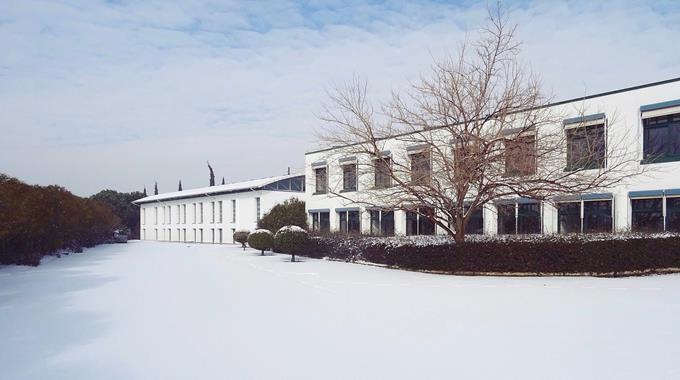 Schnee 32
