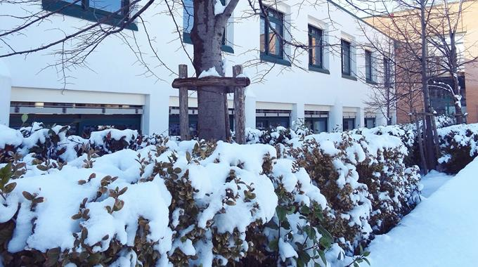 Schnee 38