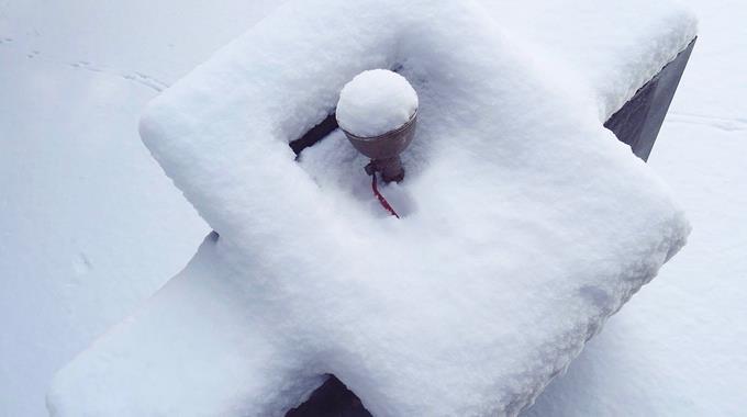 Schnee 39