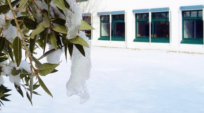 Schnee 40