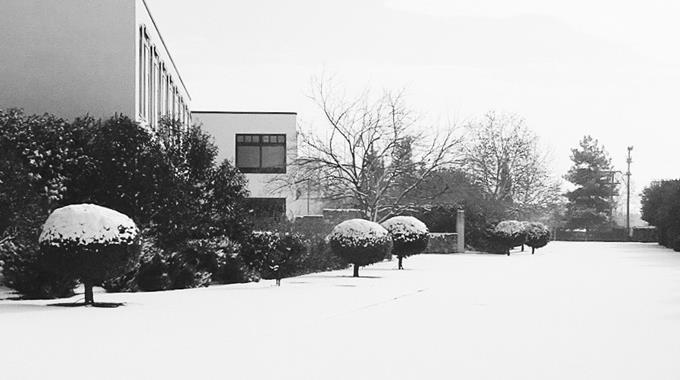 Schnee 41