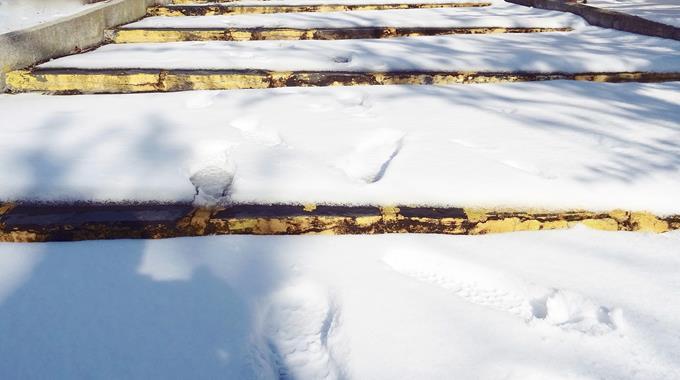 Schnee 46