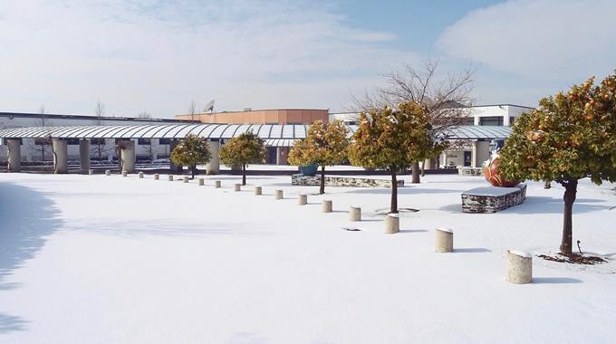 Schnee 48
