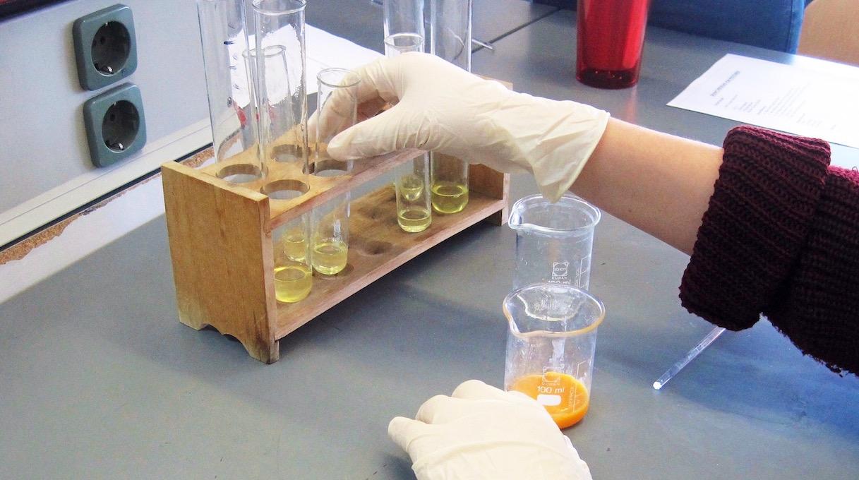 Proteine Im Biounterricht