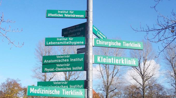 Schüler der DST auf Studienfahrt in Leipzig