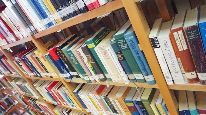Bibliotheksrally 07